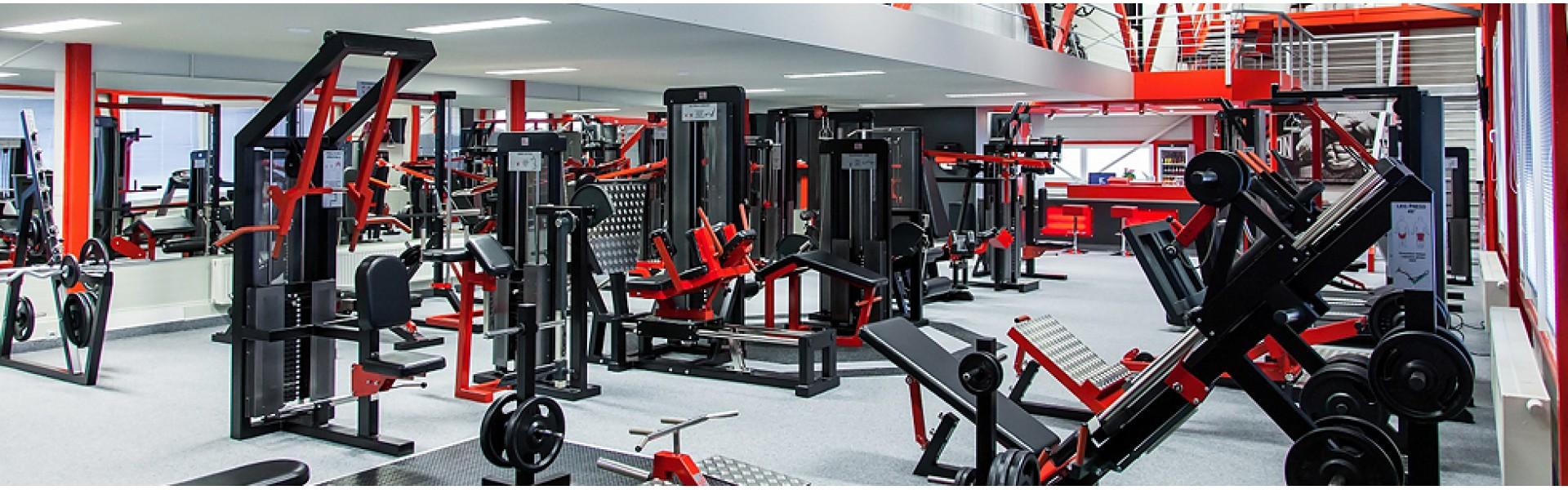 Realizované fitness